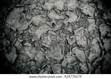 Dry land texture in desert.black and white background. - stock photo