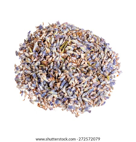 Dry lavender isolated on white background. - stock photo