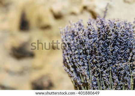 Dry lavender on a blurred yellow background