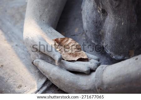dry leaf on buddha image - stock photo