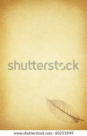 dry Leaf pattern on the vintage background - stock photo