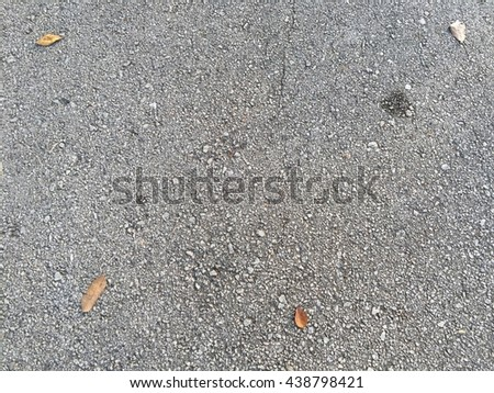 dry leafs on the road