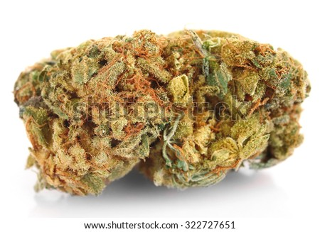 Dry medical cannabis isolated on white - stock photo