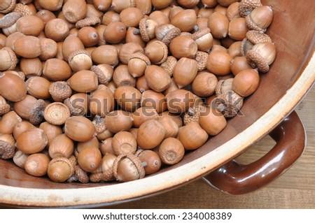 Dry oak acorns in ceramic bowl on wooden board - stock photo