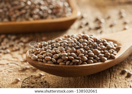 Dry Organic Brown Lentils against a background - stock photo