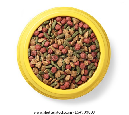 dry pet food in yellow bowl - stock photo