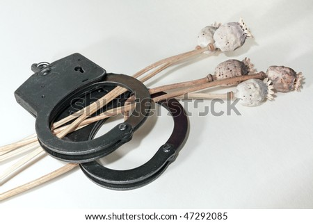 Dry poppy and handcuffs on a white background