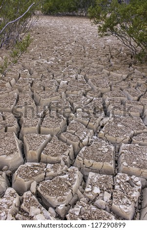 Dry River Bed - stock photo