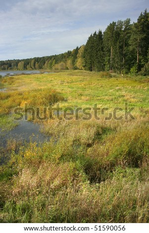 Dry river landscape - stock photo