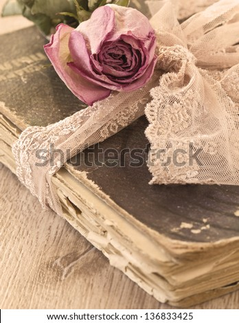 Dry rose on an old book (sepia) - stock photo