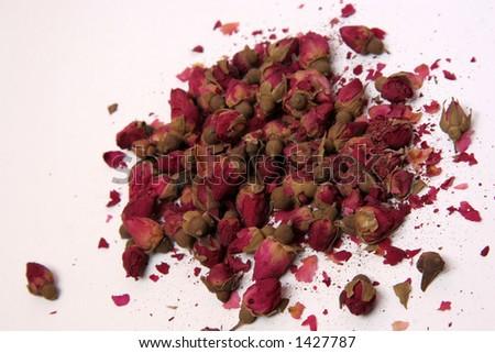 dry roses - stock photo
