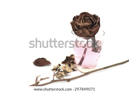 Dry roses in glass on isolated background.