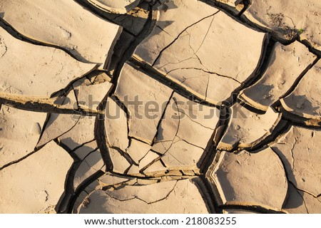 Dry soil crack - stock photo