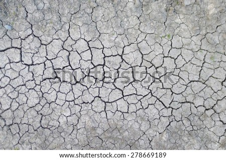 dry soil cracked earth texture, The Netherlands