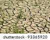 Dry soil texture - stock photo