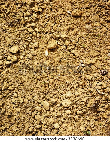 Dry soil texture. Detail. Background - stock photo