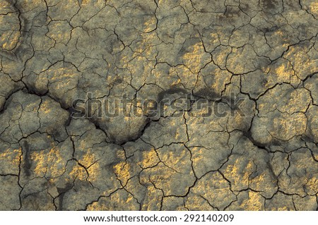 Dry soil texture on the ground. Selective focus. - stock photo
