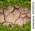 Dry soil with green creepers background - stock photo