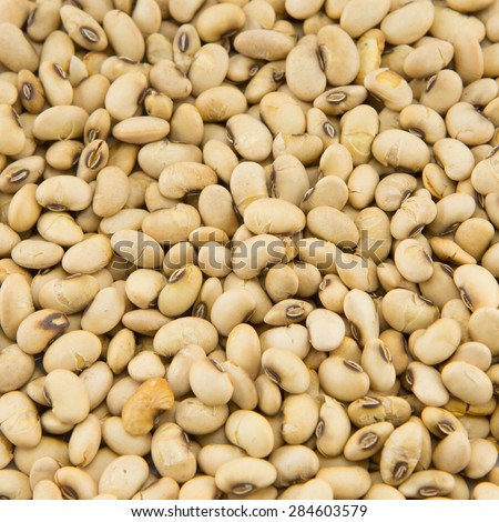 dry soybean pattern use for background - stock photo