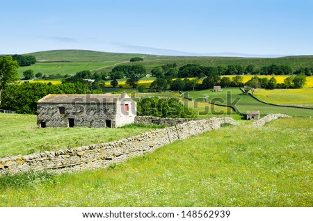 Dry stone wall and stone barn in Wensleydale - stock photo