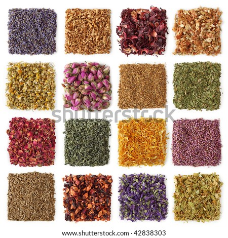 Dry tea-lavender,orange blossom, hibiscus,jasmin,chamomile,rosebud, elder flower,peppermint,rose petal,gunpowder tea,marigold flower,heather blossom, Fennel,apple, mallow flower, lime tree flower - stock photo