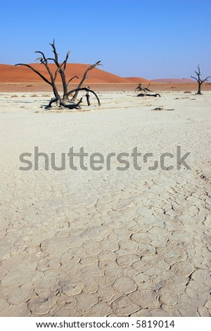 Dry terrain and dune - Lack of water. Namibia, , Deadvlei, Sossuvlei. - stock photo