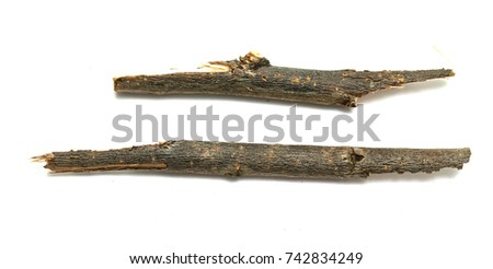 dry twigs isolated on white background