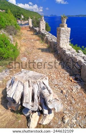 Dry wood and old fence above the Adriatic sea, Dalmatian coast, Croatia - stock photo
