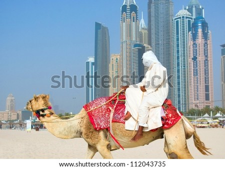 Dubai beach and camel