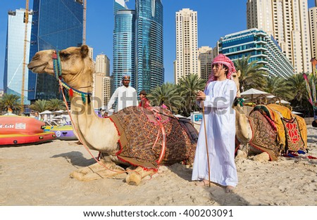 Dubai camel stock images royalty free images vectors shutterstock dubai marinaunited arab emirates march 10 2016 view on camels and thecheapjerseys Images