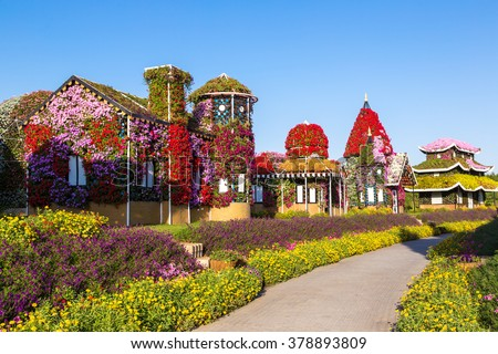 Dubai miracle garden with over 45 million flowers in a sunny day - stock photo