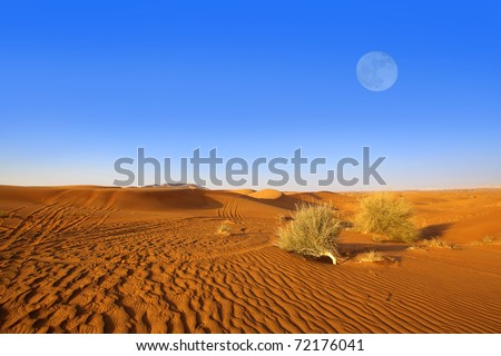 Dubai sand dunes - stock photo