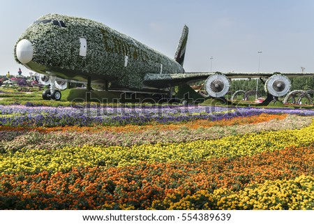 DUBAI, UAE - JANUARY 02, 2017: Dubai miracle garden: the world's largest natural flower garden. Setting real aircraft structure covered with flowers