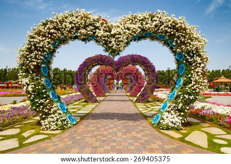 DUBAI, UAE - MARCH 28:  Hearts way in Dubai Miracle Garden in the UAE on March 28, 2015. It has over 45 million flowers.