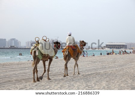 DUBAI, UAE - MAY 30: Bedouin with camels on the beach in Dubai. May 30, 2011 in Dubai, United Arab Emirates