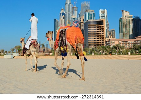DUBAI, UAE - NOVEMBER 11, 2013: High rise buildings and Arab man sitting on a camel - stock photo