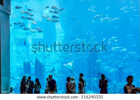 DUBAI, UAE - SEPTEMBER 30: Large aquarium in Hotel Atlantis (1,539 spacious guest rooms including 166 suites) on man-made island of Palm Jumeirah at September 30, 2012 in Dubai, United Arab Emirates. - stock photo