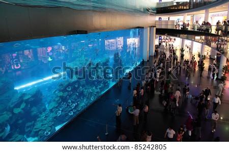 DUBAI, UNITED ARAB EMIRATES - MARCH 21: View of the aquarium in Dubai Mall shopping center in Dubai, on March 21, 2011. The largest indoor aquarium in the world, length of 50 meters. - stock photo