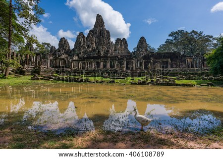 Duck at pond near Bayon Temple. The temple built as the official state temple of the Mahayana Buddhist King Jayavarman VII. - stock photo