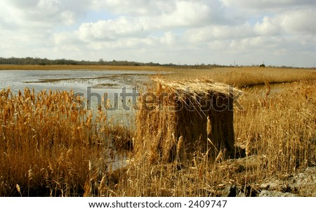 Duck blind in the marsh that leads to Delaware Bay. - stock photo
