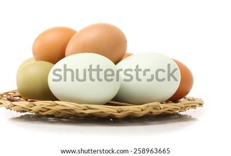 Duck Eggs and Chicken eggs on white background - stock photo