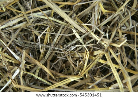 Duck eggs in a nest made of straw.