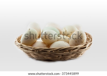 duck eggs in basket on isolated background