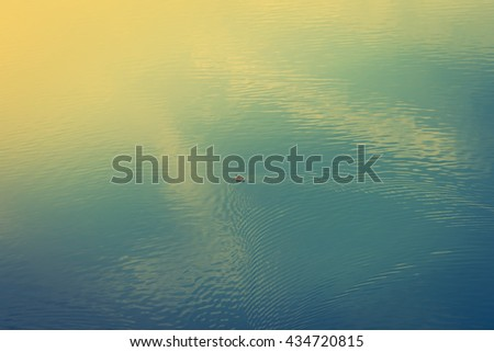 Duck on the lake ( Filtered image processed vintage effect. ) - stock photo
