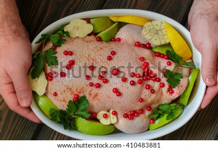 Duck stuffed with apples and cabbage ready for cooking with cranberries, lemon and spices in white ceramic form. Selective focus - stock photo