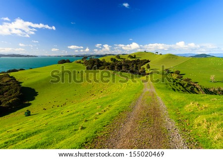 Duder Regional Park, Auckland, New Zealand - stock photo
