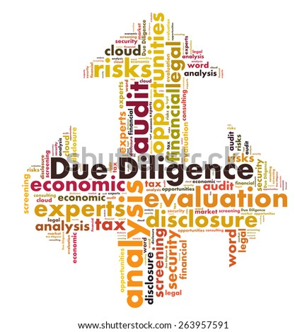 Due Diligence word cloud - stock photo