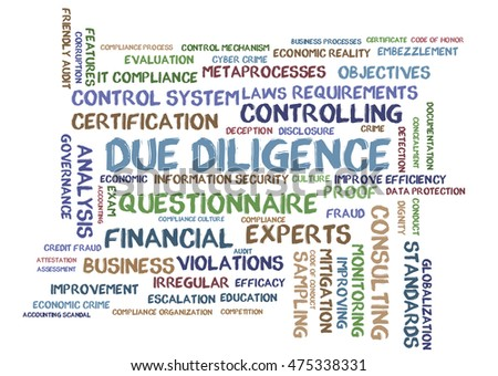 Due Diligence word cloud