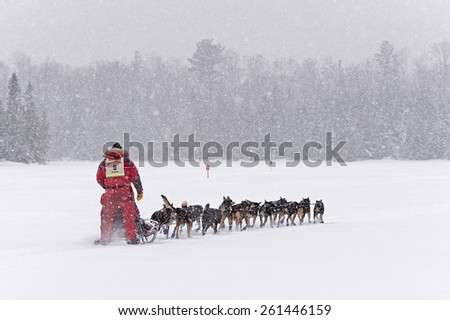 DULUTH, MN - JANUARY 27: Nathan Schroeder's team leaves Trail Center Checkpoint in the Marathon portion of the John Beargrease Sled Dog Race. Schroeder finished 1st on January 27, 2015 in Duluth, MN - stock photo
