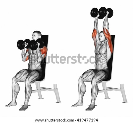 Dumbbell Seated Shoulder Press Parallel Grip Stock